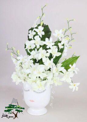 گل ارکیده و شرایط لازم برای نگهداری آن