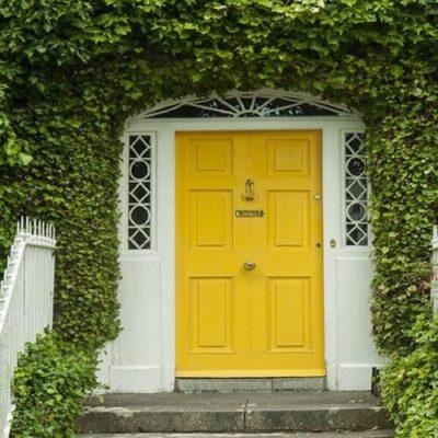 Suitable plants in front of the door